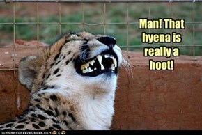 Man! That hyena is really a hoot!