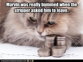 Marvin was really bummed when the stripper asked him to leave..