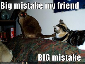 Big mistake my friend  BIG mistake