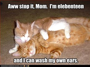 Aww stop it, Mom.  I'm elebenteen        and I can wash my own ears.