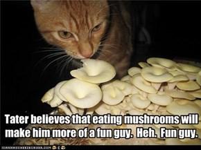 Tater believes that eating mushrooms will make him more of a fun guy.  Heh.  Fun guy.