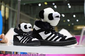Panda Adidas