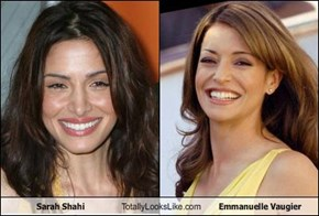 Sarah Shahi Totally Looks Like Emmanuelle Vaugier