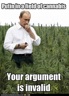 Putin in a field of cannabis