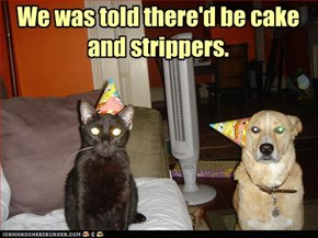 We was told there'd be cake and strippers.