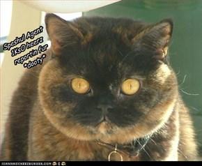 furrgy enlists help fur expertise ta maek DURTY SnoBlols ~
