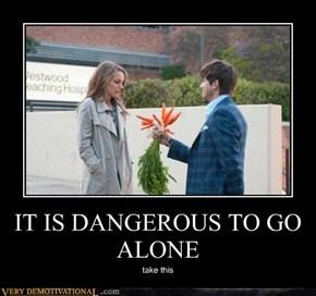 IT IS DANGEROUS TO GO ALONE