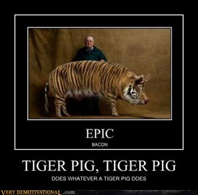 TIGER PIG, TIGER PIG