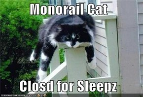 Monorail Cat  Closd for Sleepz