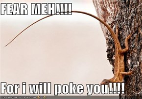 FEAR MEH!!!!  For i will poke you!!!!
