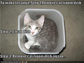 To make lasanga..Step 1.Remove cat froom dish Step 2. clean dish Step 3. Remove cat froom dish agaan...