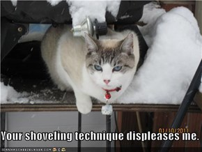 Your shoveling technique displeases me.