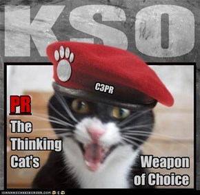 "Team KSO: C3PR's Words to Live By - ""Dry wit, dry paws"""
