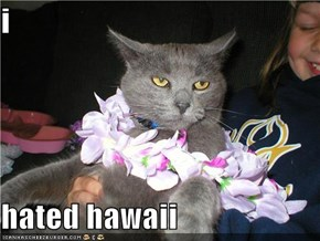 i  hated hawaii