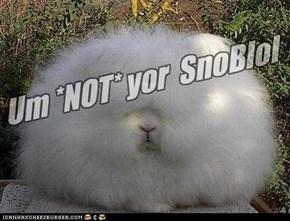 Um *NOT* yor  SnoBlol