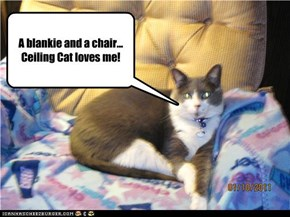 A blankie and a chair... Ceiling Cat loves me!