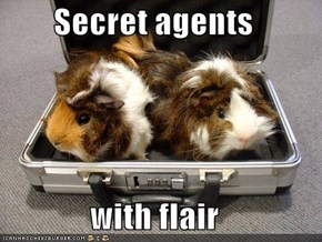 Secret agents  with flair