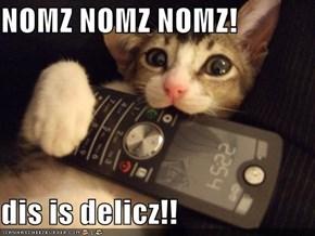 NOMZ NOMZ NOMZ!  dis is delicz!!