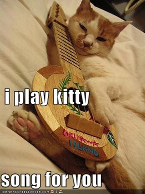 i play kitty song for you