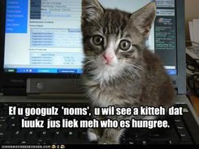 Ef u googulz  'noms',  u wil see a kitteh  dat luukz  jus liek meh who es hungree.