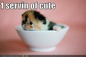 1 servin of cute