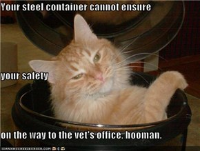 Your steel container cannot ensure your safety on the way to the vet's office, hooman.