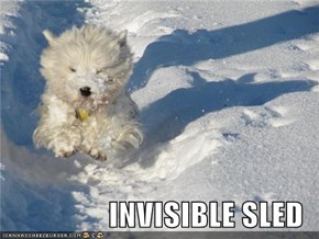 INVISIBLE SLED