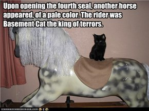 Upon opening the fourth seal, another horse appeared, of a pale color. The rider was Basement Cat the king of terrors.
