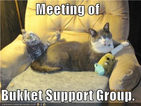 Meeting of   Bukket Support Group.