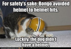 For safety's sake, Bongo avoided helmet to helmet hits.