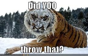 Did YOO  throw that?