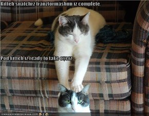 Kitteh snatchrz tranzformashun iz complete. Pod kitteh iz ready to take overz