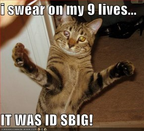 i swear on my 9 lives...  IT WAS ID SBIG!