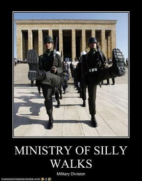MINISTRY OF SILLY WALKS