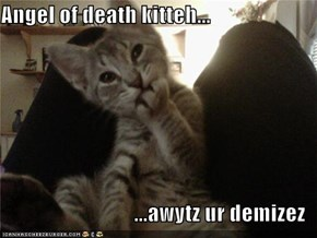 Angel of death kitteh...  ...awytz ur demizez