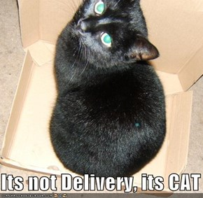 Its not Delivery, its CAT