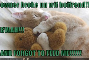 owner broke up wif boifrend!!!! BWAH!!! AND FORGOT TO FEED ME!!!!!!