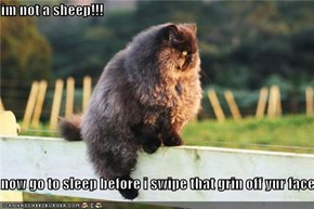 im not a sheep!!!  now go to sleep before i swipe that grin off yur face