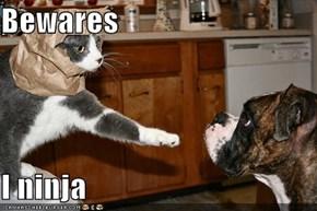 Bewares  I ninja