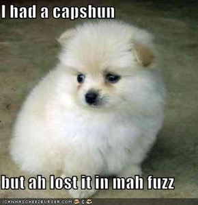 I had a capshun  but ah lost it in mah fuzz