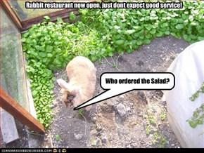 Worlds worst waiter