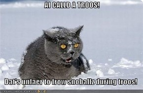 AI CALLD A TROOS!     Dat's unfaer to frow snoballz during troos!
