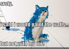 srsly. i said i would paint the walls... but not with my fur!