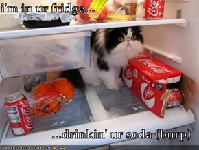 i'm in ur fridge...  ...drinkin' ur soda (burp)