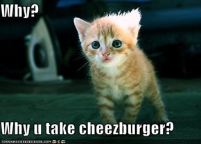 Why?  Why u take cheezburger?