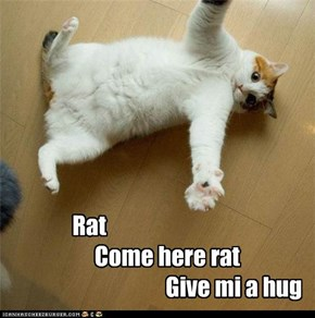 Rat                      Come here rat                                      Give mi a hug