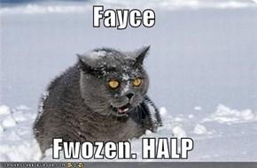 Fayce  Fwozen. HALP
