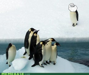 Forever Alone Penguin