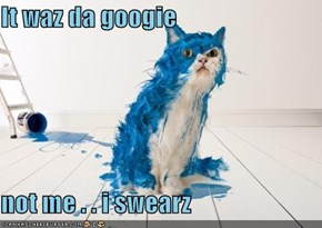 It waz da googie  not me . . i swearz
