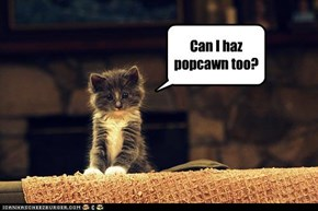 Can I haz popcawn too?